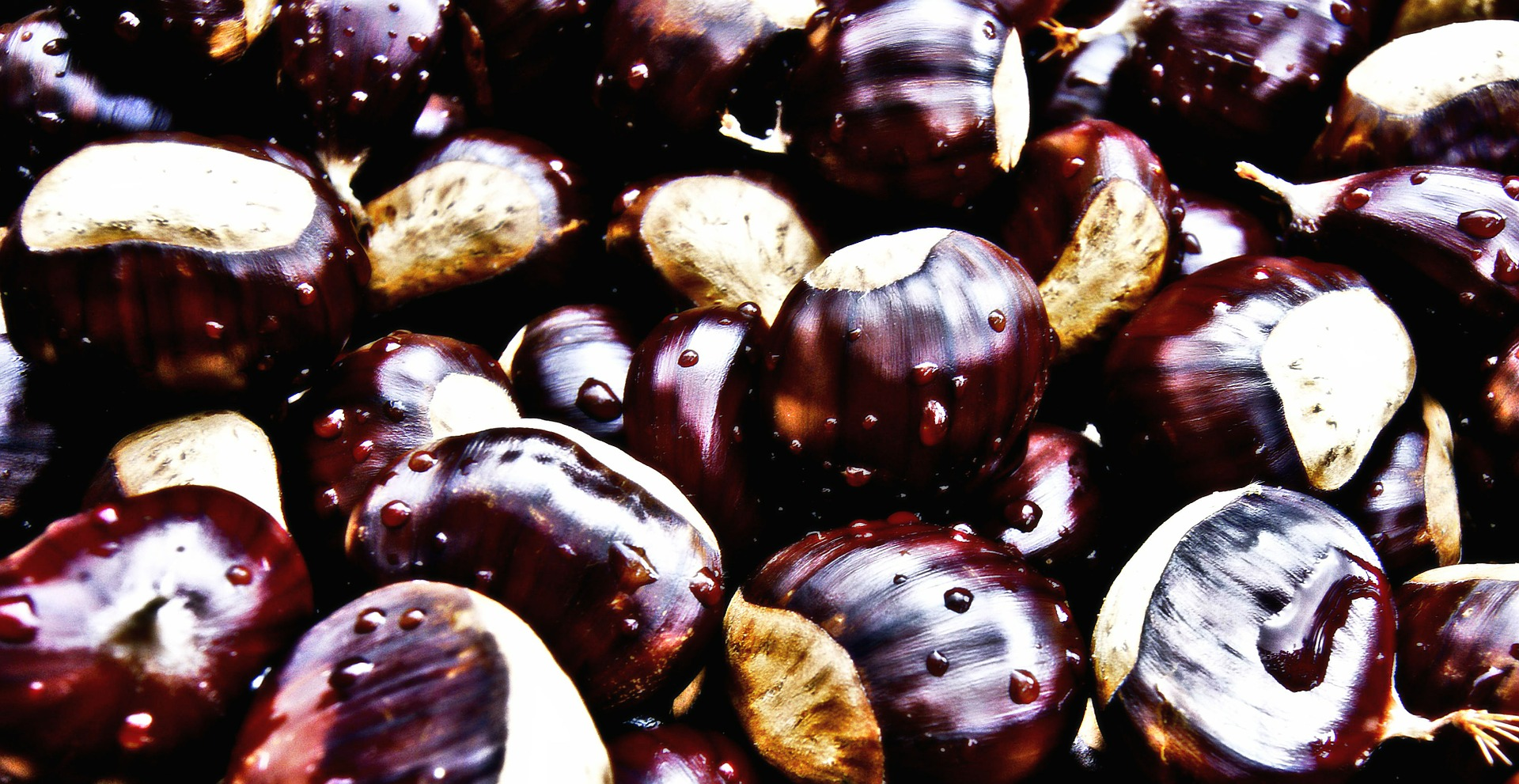 chestnuts-439089_1920